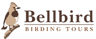 Bellbird Tours Logo
